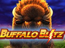 Слот Buffalo Blitz – секреты дикой природы на игровом портале Вулкан